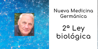 2 ley biologica nmg